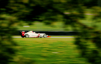 Kush Maini in F3 seen through the trees at Donington Park.