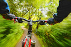 Riding a mountain bike through a forest